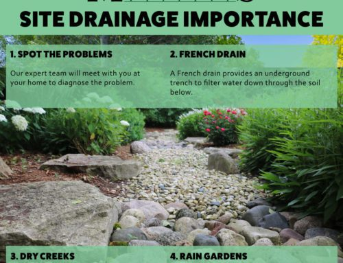 3 Solutions for Landscape Site Drainage in the Chicago Suburb Area