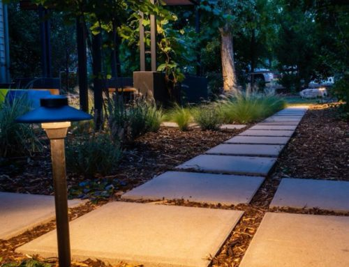 The Value of Landscape Lighting in the Chicago Northwest Suburbs